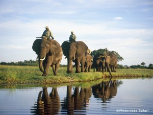 The Okavango Delta safari camp at Abu